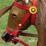 Hand Made Rocking Horse Photos