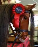 Rocking Horse Accessories Shop Images