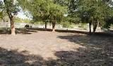 Rocking Horse Stables Pictures