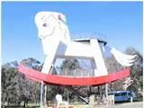 Pictures of The Big Rocking Horse Sa